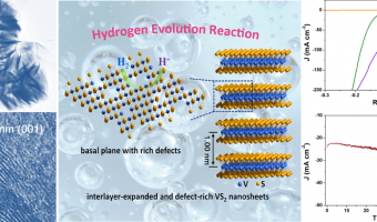 Recent Breakthroughs in Energy Electrocatalytic Materials from Prof. Zhouguang Lu's Group